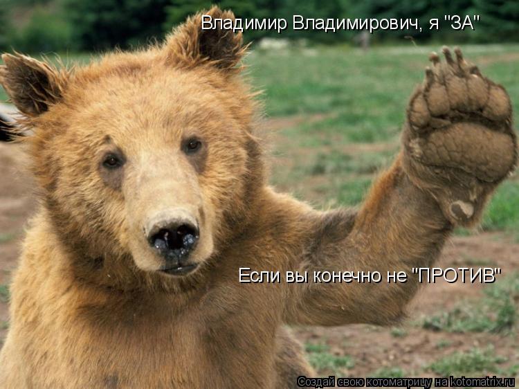 """Котоматрица: Владимир Владимирович, я """"ЗА"""" Если вы конечно не """"ПРОТИВ"""""""