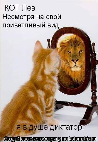 Котоматрица: КОТ Лев Несмотря на свой  приветливый вид,  я в душе диктатор.
