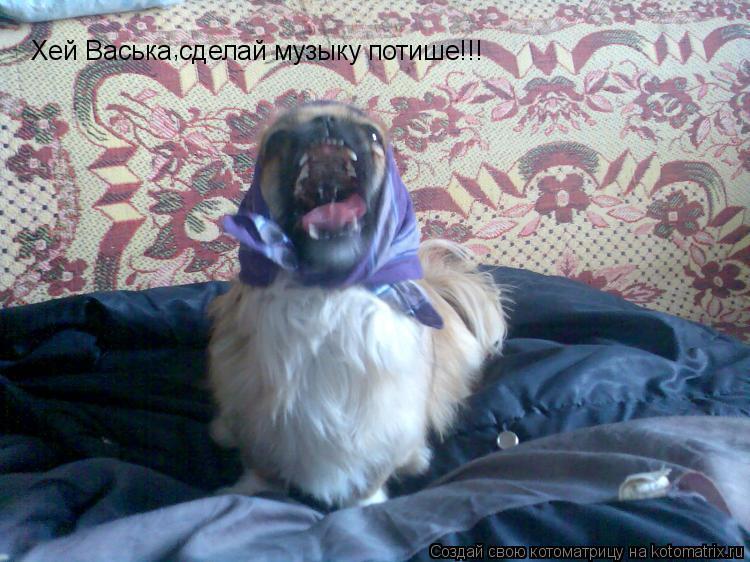 Котоматрица: Хей Васька сделай музыку потише!!! ,