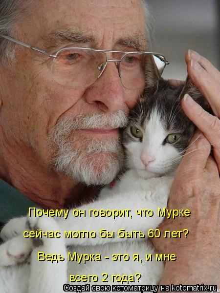 Котоматрица: Почему он говорит, что Мурке сейчас могло бы быть 60 лет? Ведь Мурка - это я, и мне всего 2 года?