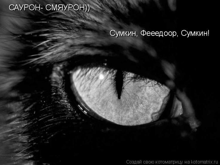 Котоматрица: САУРОН- СМЯУРОН)) Сумкин, Фееедоор, Сумкин!