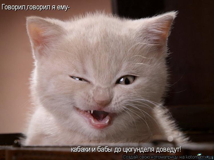 Котоматрица: Говорил,говорил я ему- кабаки и бабы до цюгунделя доведут!