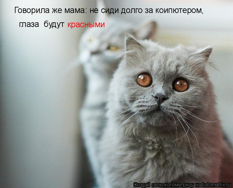 Котоматрица: Говорила же мама: не сиди долго за коипютером, глаза  будут красными