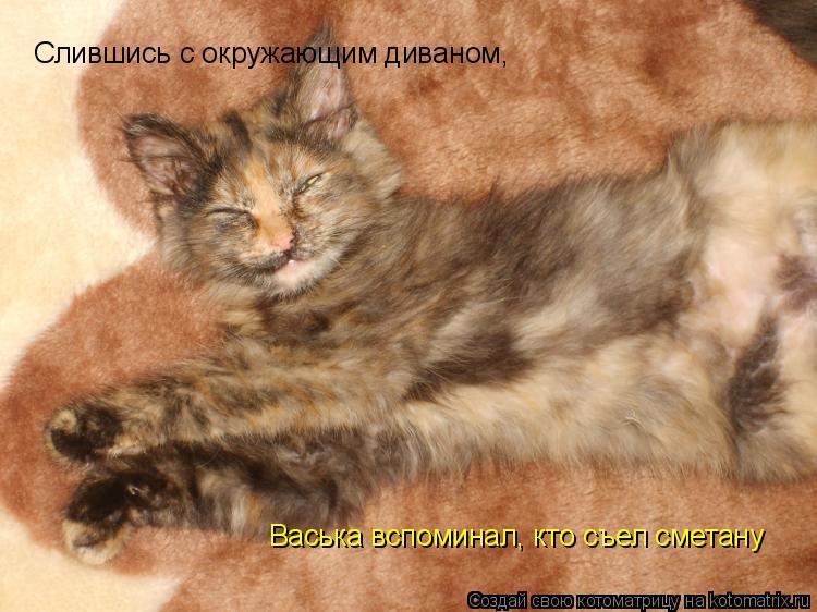Котоматрица: Слившись с окружающим диваном, Васька вспоминал, кто съел сметану