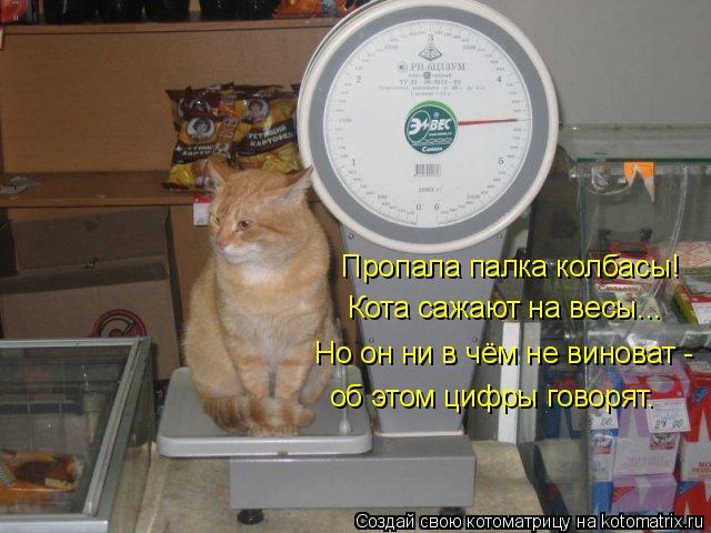 Котоматрица: Пропала палка колбасы! Кота сажают на весы... Но он ни в чём не виноват - об этом цифры говорят.