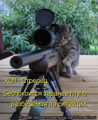Котоматрица: КОТ  Стрелец  Беспокоится заранее глупо,  разберёмся по ситуации.