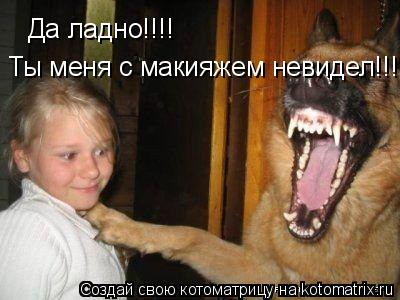 Котоматрица: Да ладно!!!! Ты меня с макияжем невидел!!!