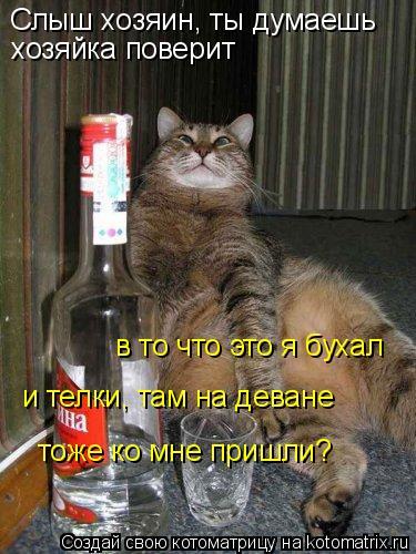 Котоматрица: Слыш хозяин, ты думаешь хозяйка поверит в то что это я бухал и телки, там на деване тоже ко мне пришли?