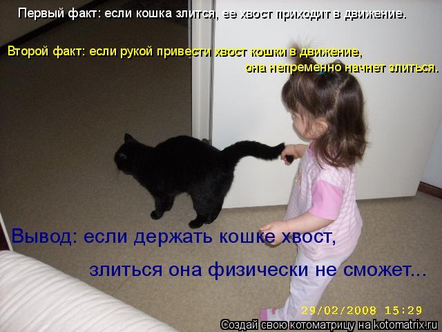 Котоматрица: Первый факт: если кошка злится, ее хвост приходит в движение. Второй факт: если рукой привести хвост кошки в движение,  она непременно начнет