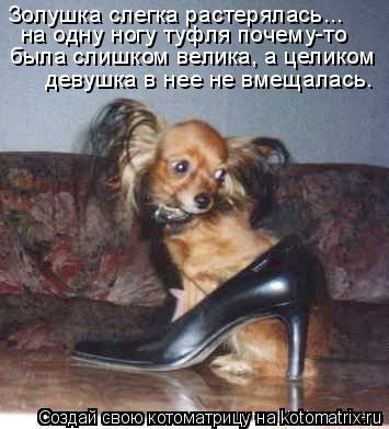 Котоматрица: Золушка слегка растерялась... была слишком велика, а целиком на одну ногу туфля почему-то  девушка в нее не вмещалась.