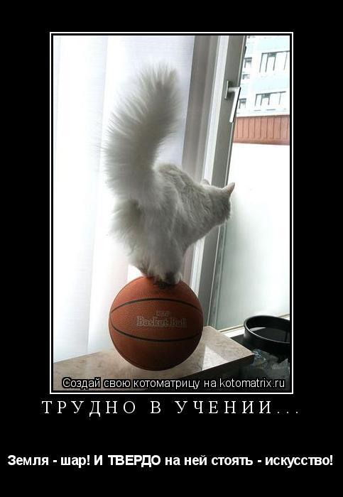 Котоматрица: трудно в учении... Земля - шар! И ТВЕРДО на ней стоять - искусство!
