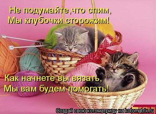 Котоматрица: Не подумайте,что спим, Как начнете вы вязать, Мы вам будем помогать! Мы клубочки сторожим!