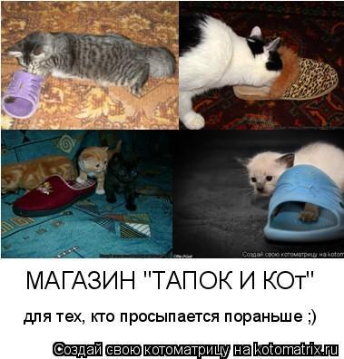 """Котоматрица: МАГАЗИН """"ТАПОК И КОт"""" для тех, кто просыпается пораньше ;)"""