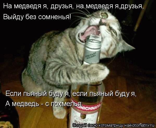 Котоматрица: На медведя я, друзья, на медведя я,друзья, Выйду без сомненья! Если пьяный буду я, если пьяный буду я, А медведь - с похмелья.