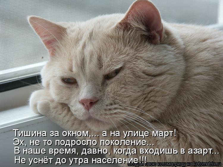Котоматрица: В наше время, давно, когда входишь в азарт... Не уснёт до утра население!!! Эх, не то подросло поколение... Тишина за окном,... а на улице март!