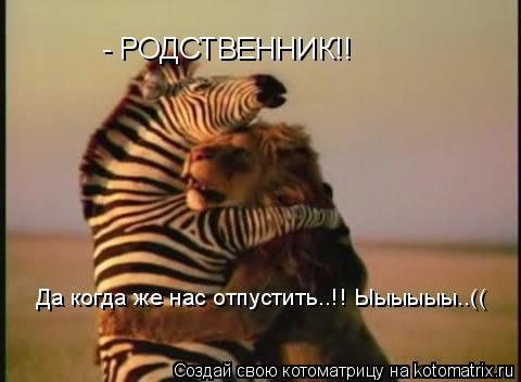 Котоматрица: - РОДСТВЕННИК!! Да когда же нас отпустить..!! Ыыыыыы..((