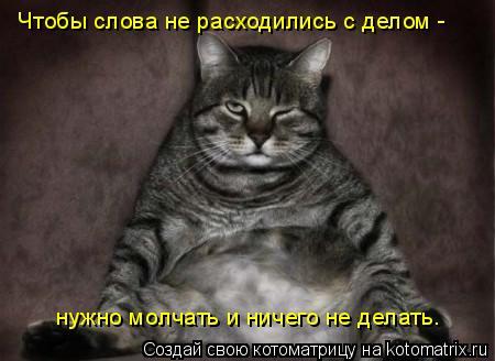 Котоматрица: Чтобы слова не расходились с делом -  нужно молчать и ничего не делать.