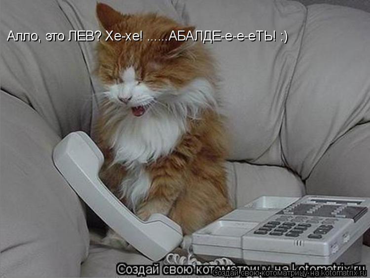 Котоматрица: Алло, это ЛЕВ? Хе-хе! ......АБАЛДЕ-е-е-еТЬ! :)