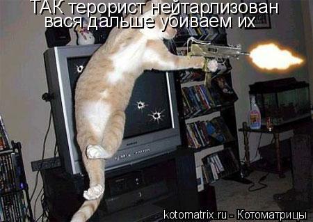 Котоматрица: ТАК терорист нейтарлизован вася дальше убиваем их