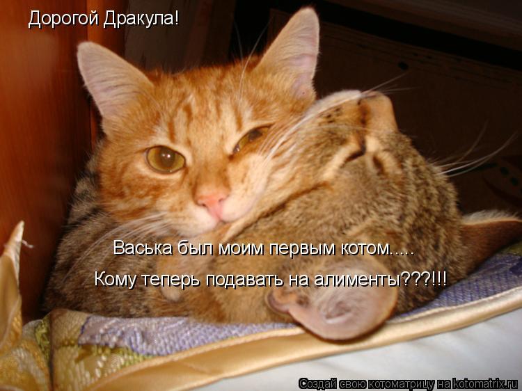 Котоматрица: Дорогой Дракула!  Васька был моим первым котом..... Кому теперь подавать на алименты???!!!