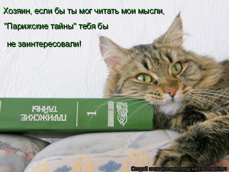 """Котоматрица: Хозяин, если бы ты мог читать мои мысли, """"Парижские тайны"""" тебя бы не заинтересовали!"""