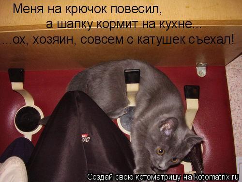 Котоматрица: Меня на крючок повесил, а шапку кормит на кухне... ...ох, хозяин, совсем с катушек съехал!