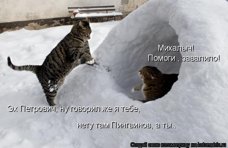 Котоматрица: Михалыч! Помоги , завалило! Эх Петрович, ну говорил же я тебе, нету там Пингвинов, а ты..
