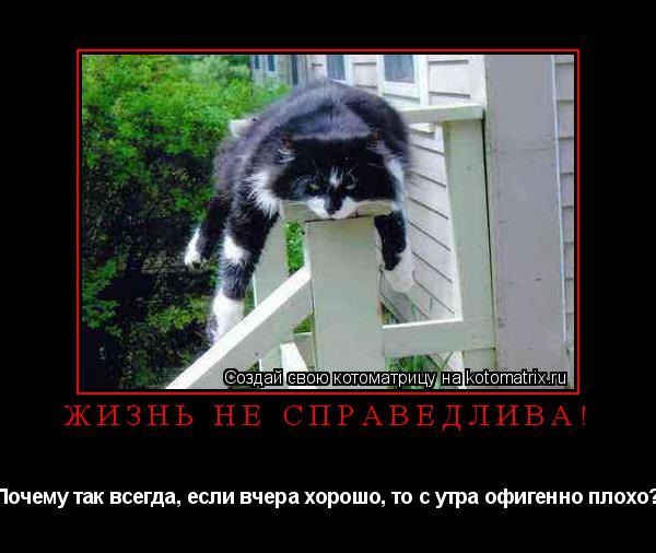 Котоматрица: Жизнь не справедлива! Почему так всегда, если вчера хорошо, то с утра офигенно плохо?
