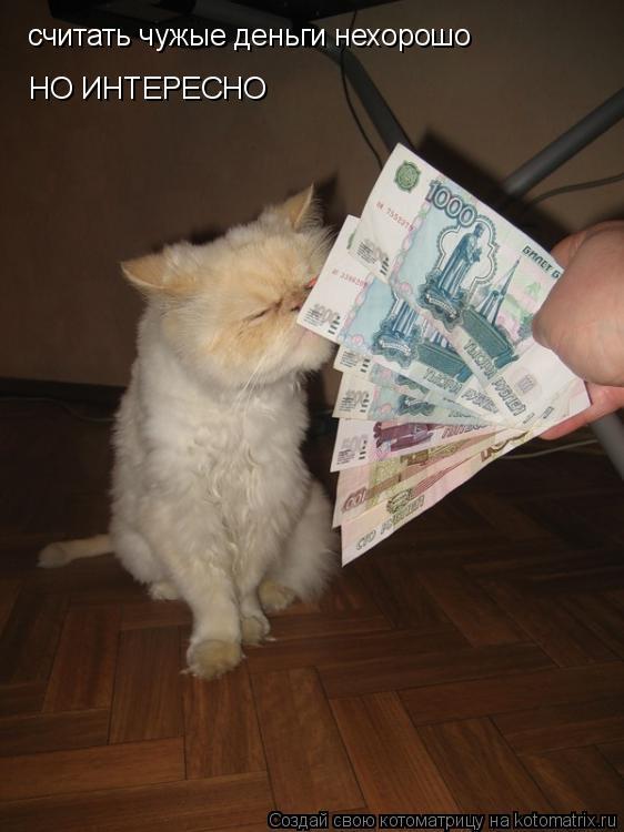 Котоматрица: считать чужые деньги нехорошо НО ИНТЕРЕСНО
