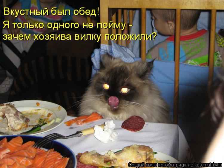 Котоматрица: Вкустный был обед! Я только одного не пойму -  зачем хозяива вилку положили?