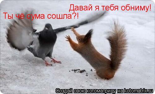 Котоматрица: Давай я тебя обниму! Ты чё сума сошла?!