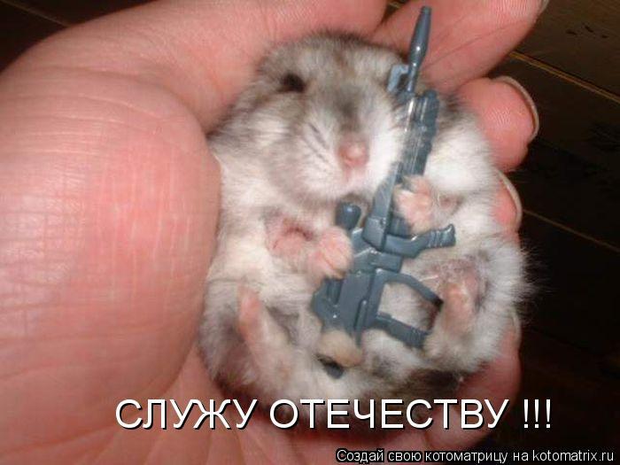 Котоматрица: СЛУЖУ ОТЕЧЕСТВУ !!!