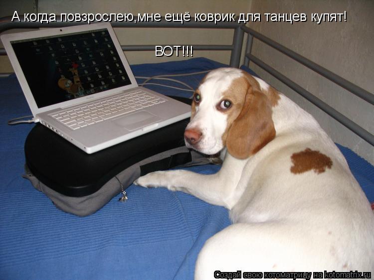 Котоматрица: А когда повзрослею,мне ещё коврик для танцев купят! ВОТ!!!