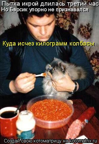 Котоматрица: Пытка икрой длилась третий час, Но Барсик упорно не признавался Куда исчез килограмм колбасы