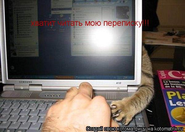 Котоматрица: хватит читать мою переписку!!!