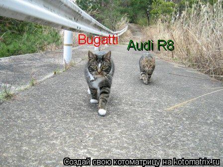 Котоматрица: Bugatti Audi R8