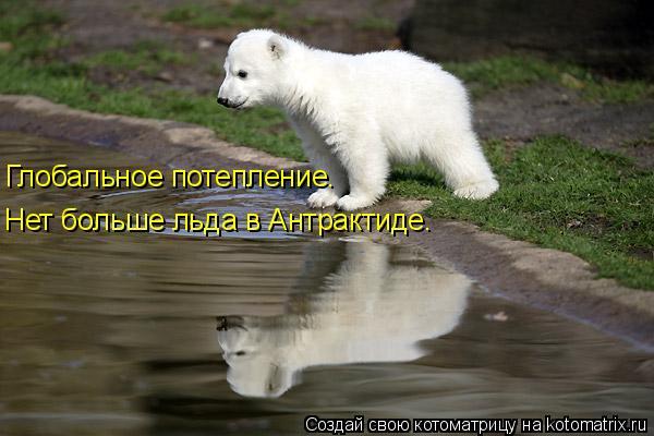 Котоматрица: Глобальное потепление. Нет больше льда в Антрактиде.