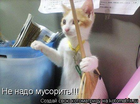 Котоматрица: Не надо мусорить!!!