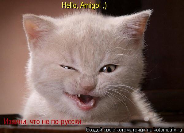 Котоматрица: Hello, Amigo! ;) Извини, что не по-русски...