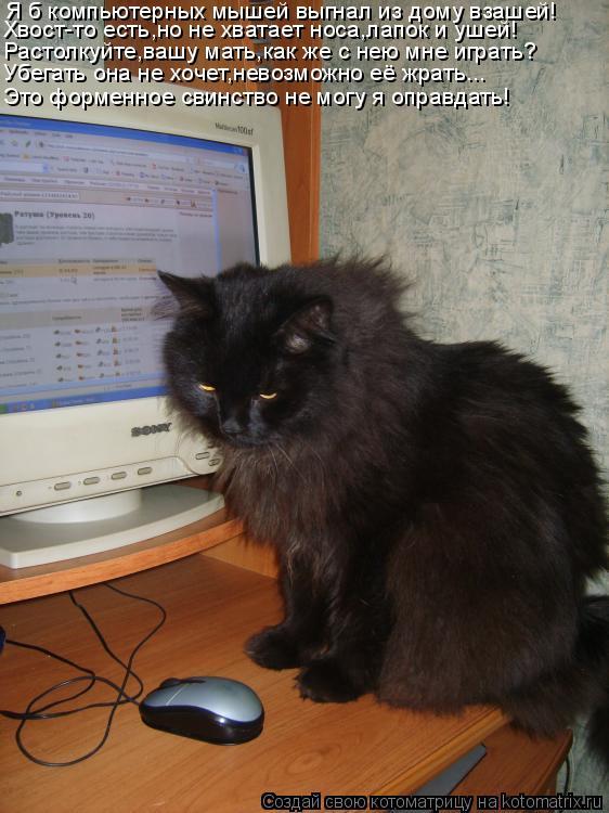 Котоматрица: Я б компьютерных мышей выгнал из дому взашей! Хвост-то есть,но не хватает носа,лапок и ушей! Растолкуйте,вашу мать,как же с нею мне играть? Уб