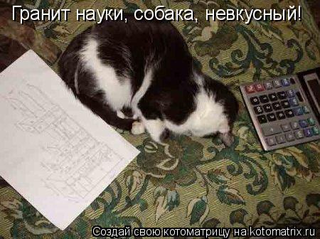 Котоматрица: Гранит науки, собака, невкусный!