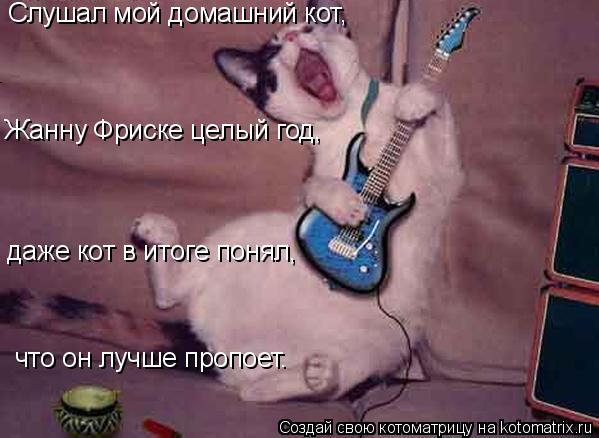 Котоматрица: Слушал мой домашний кот,  Жанну Фриске целый год,  даже кот в итоге понял,  что он лучше пропоет.