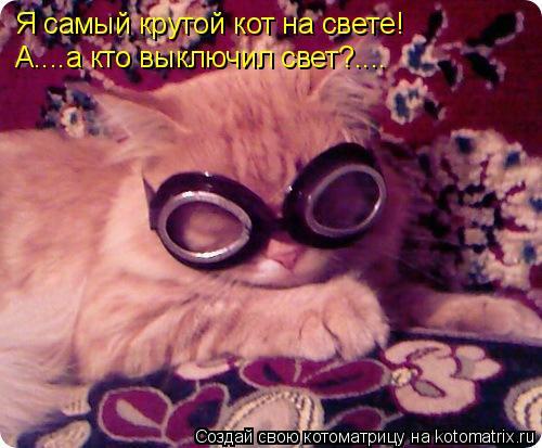 Котоматрица: Я самый крутой кот на свете! А....а кто выключил свет?....
