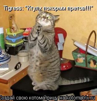 """Котоматрица: Tigress: """"Ктулх покорми претов!!!"""""""