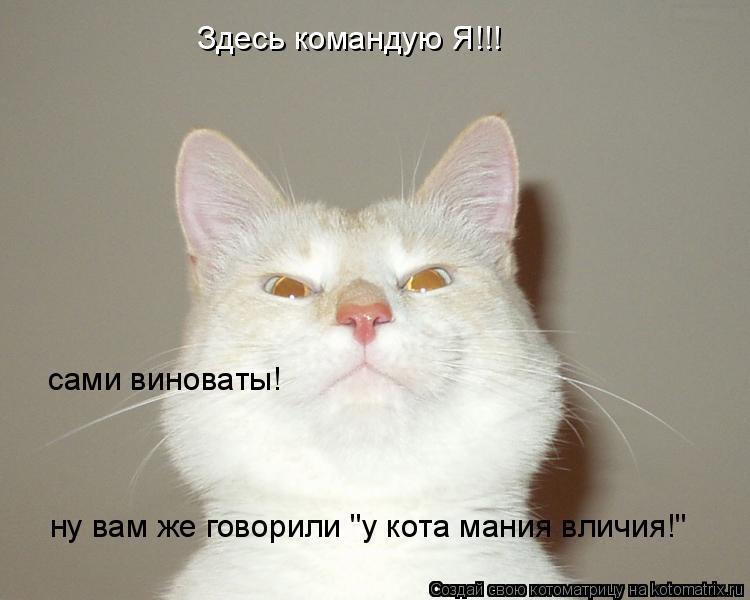 """Котоматрица: Здесь командую Я!!! cами виноваты!  ну вам же говорили """"у кота мания вличия!"""""""