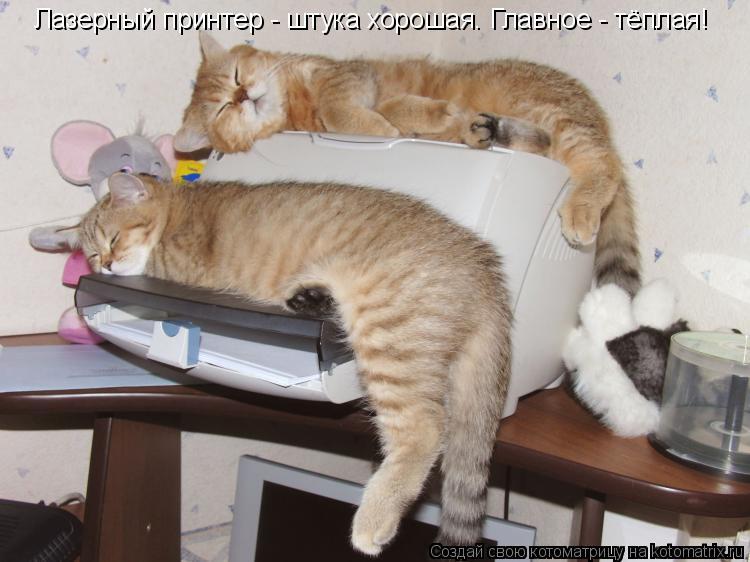 Котоматрица: Лазерный принтер - штука хорошая. Главное - тёплая!