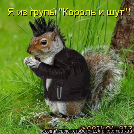 """Котоматрица: Я из групы """"Король и шут""""!"""