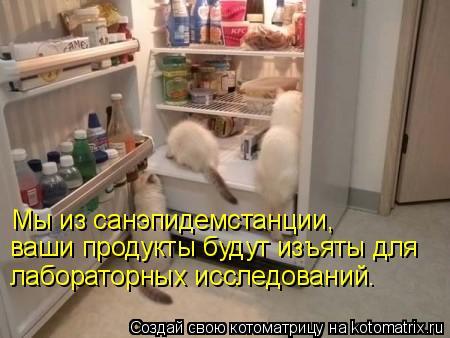 Котоматрица: Мы из санэпидемстанции,  ваши продукты будут изъяты для лабораторных исследований.