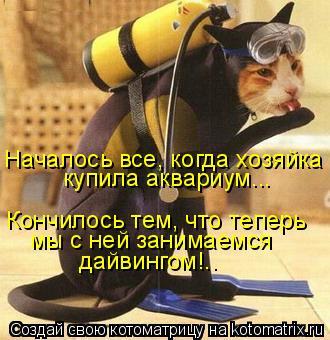 Котоматрица: Началось все, когда хозяйка  купила аквариум... Кончилось тем, что теперь  мы с ней занимаемся дайвингом!..