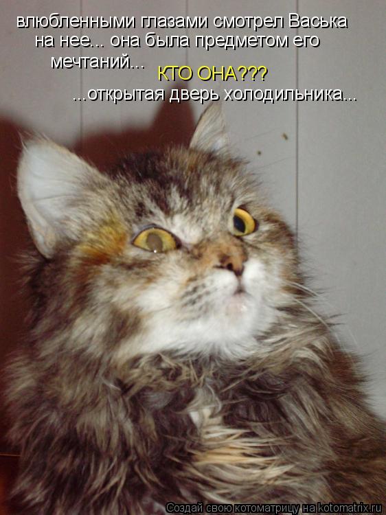 Котоматрица: влюбленными глазами смотрел Васька на нее... она была предметом его мечтаний... КТО ОНА??? ...открытая дверь холодильника...
